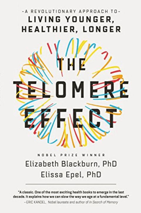 Book review – The Telomere Effect – More damage to the damage theory of aging